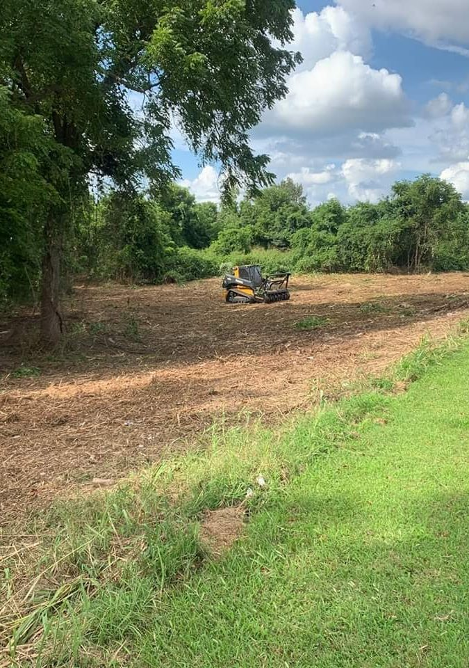Forestry Mulching Springfield MO