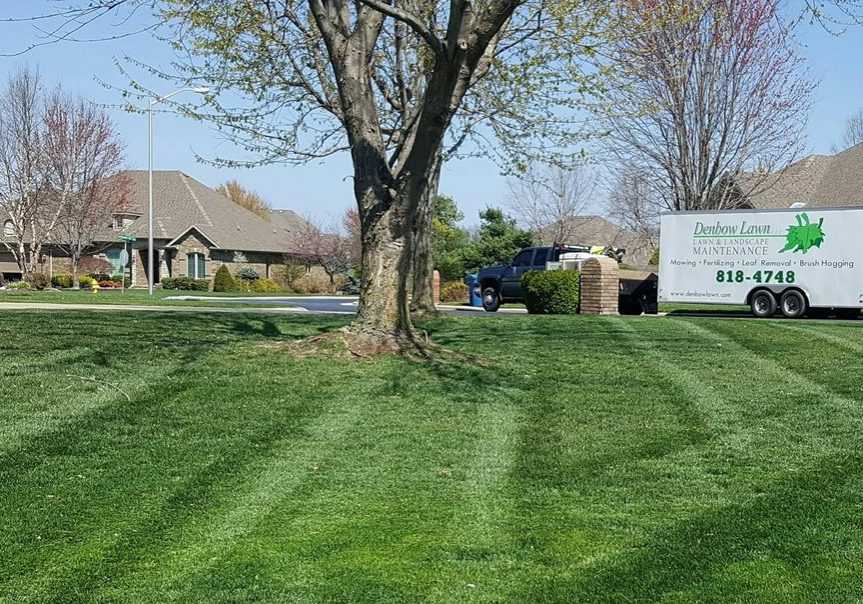 Residential Lawn Care in Nixa